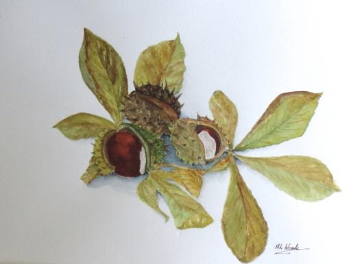 Horse Chestnuts by Margaret Woolls